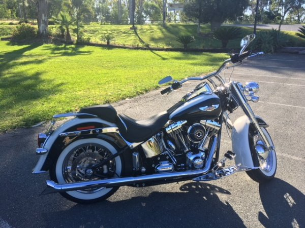 Shane Grundy 112k6 Gold Coast Harley Polished 2013 Softail Deluxe (1)